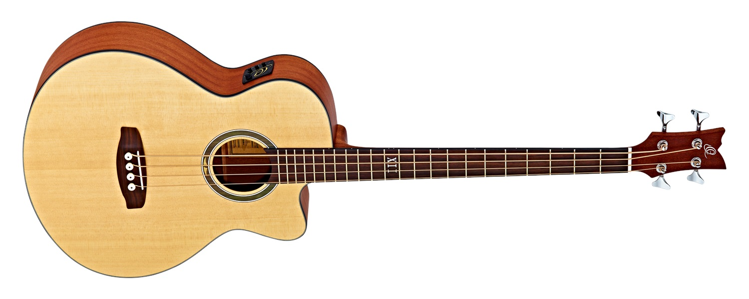 Ortega D5384 Acoustic Bass