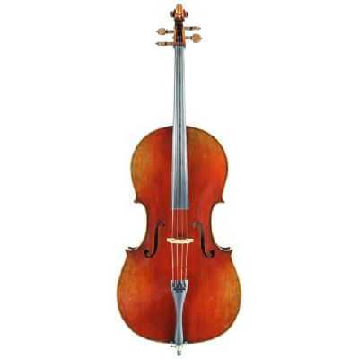 Eastman Strings VC605 Advanced Model 4/4 Cello