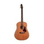 Seagull Coastline Momentum Acoustic/Electric Guitar